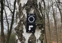 Kölnpfad Etappe 1