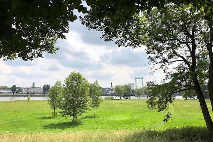 Kölnpfad Etappe 5