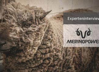 Merinoweolle-Experteninterview-Merinopower