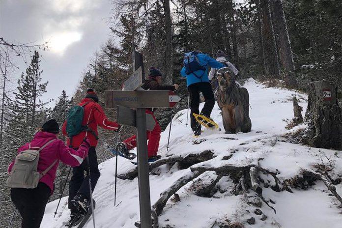 Schneeschuhwandern Tipps