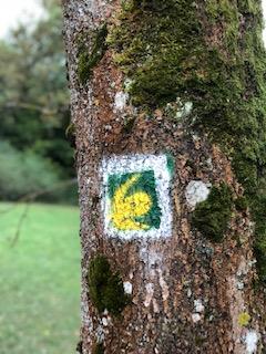 Eifelsteig Logo an Baum