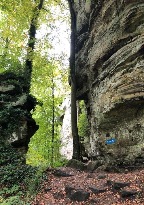 Goldfralay auf dem Mullerthal Trail