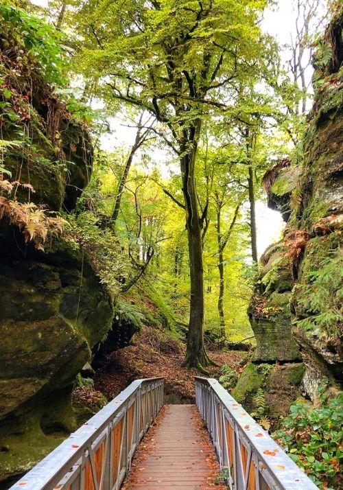 mullerthal trail - wandern zwischen den sandsteinfelsen