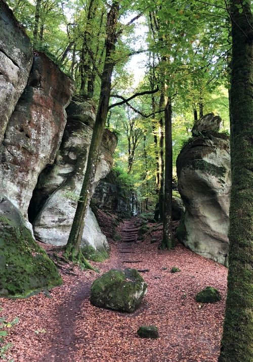 Herbststimmung auf dem Mullerthal Trail