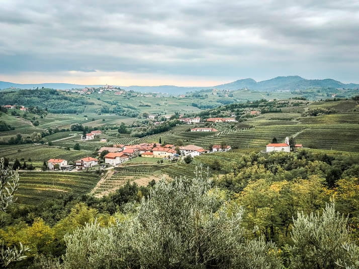 Slowenische Weinanbauregion Brda