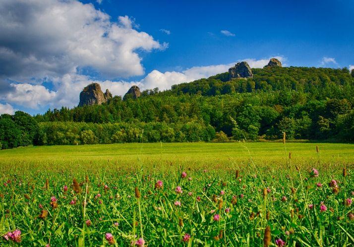 Landschaft um die Bruchhauser Steine