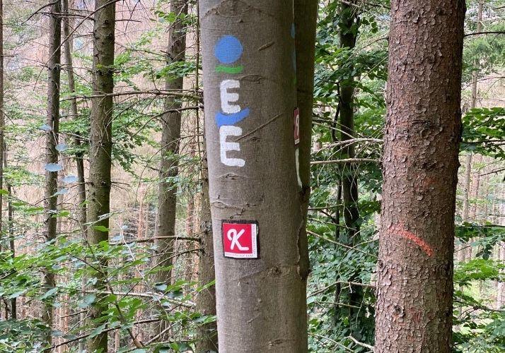 Wanderzeichen Ederhöhenpfad