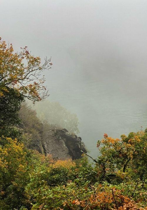 Ausblick auf den Rhein im tiefen Nebel