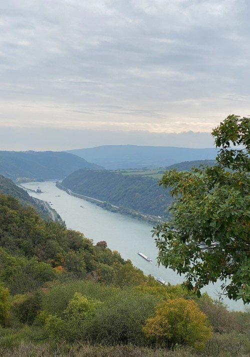 Rheinsteig Rheinpanorama